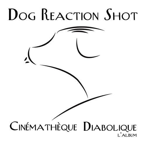 Dog Reaction  Shot