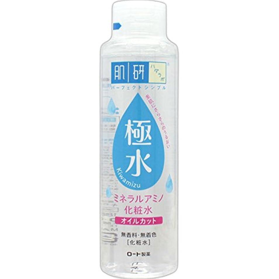 木製ビルマ自己尊重肌研(ハダラボ) 極水 ミネラルアミノ化粧水 180mL
