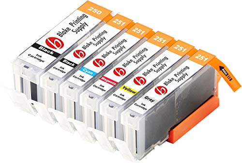 Blake Printing Supply Compatible Ink Cartridge Replacement for Canon PGI-250XL, CLI-251XL, Canon 251, Canon 250 (Pigment Black, Black, Cyan, Magenta, Yellow, Gray, 6-Pack)