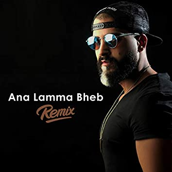 Ana Lamma Bheb (Remix)