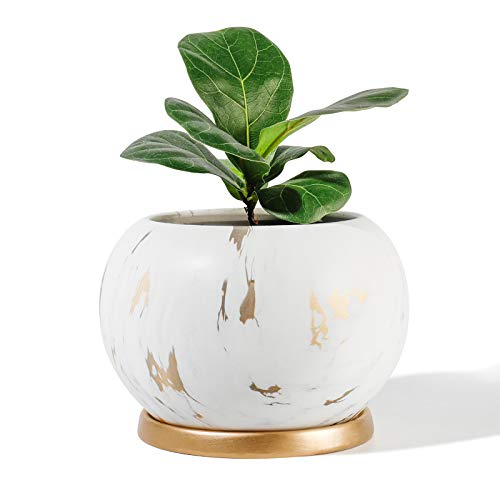 POTEY Planter Ceramic Plant Flower Pot - 5' Large Indoor Glazed Container Bonsai with Drainage Hole Saucer - Large Space , White&Golden