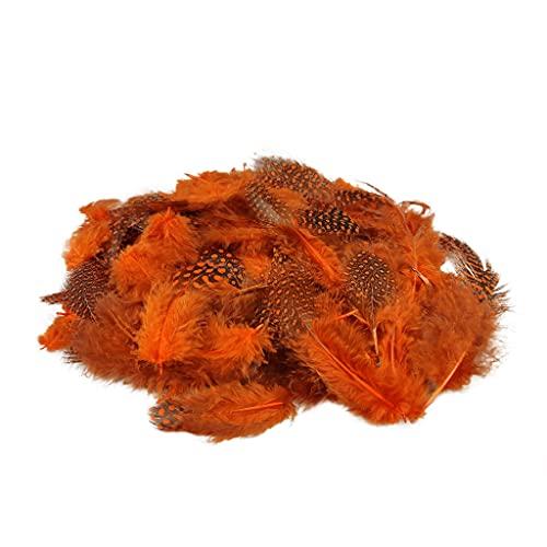 Netuno 150 Stück Orange Deko Federn 6g Perlhuhn Federn Gepunktete Federn Schmuckfedern Vogelfedern Bastelfedern Natur für DIY Basteln Dekoration Ostern Weihnachten Dekofigur