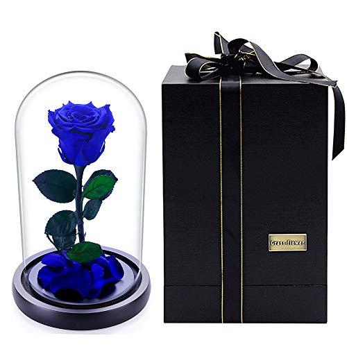 Julymoda Rose Flower Festive Forever Preserved Rose Immortal Fresh Rose Glass Cover Unique Gifts Blue Rose