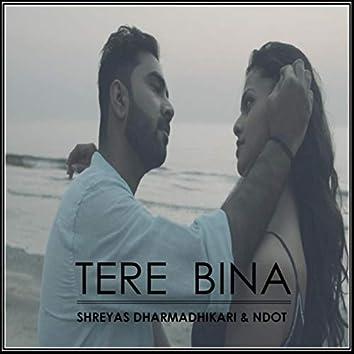 Tere Bina (feat. NDot)
