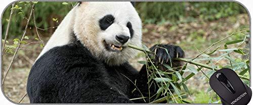 Erweiterte Gaming-Mauspad Große Größe, Schürze Tier Panda Mauspad mit genähten Kanten