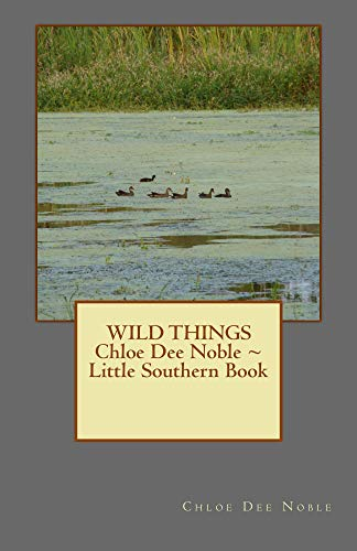 WILD THINGS Chloe Dee Noble ~ Little Southern Book (English Edition)