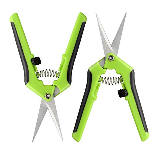 Hemoton - Tijeras de podar de 2 piezas con punta recta y tijeras de podar a mano para jardinería, cuchillas de precisión recubiertas de teflón con mango cómodo de muelle