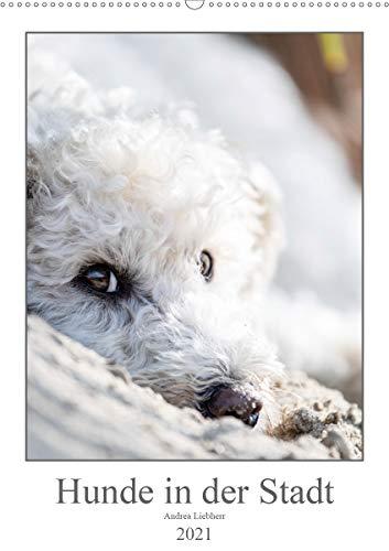 Hunde in der Stadt (Wandkalender 2021 DIN A2 hoch)