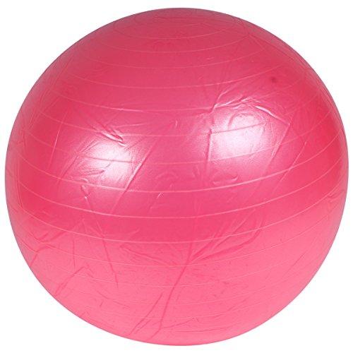 QHP Pferde Fussball aus robustem Material, gegen Langeweile (100 cm, Rosa)