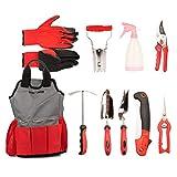 FLORA GUARD 10-teiliges Set Gartengeräte mit Handschuhen und Kit