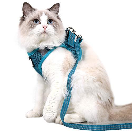 Katzengeschirr und Leine ultraleichtes Kätzchenhalsband weich und bequem zum Laufen Dämpfen für Welpen Kaninchen mit kationischem Stoff (Turq,m)