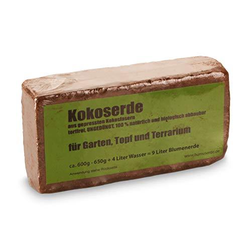 yayago Humusziegel - Kokoserde -gepresste Blumenerde aus Kokosfasern - torffrei, ungedüngt, 100{630d2ed86457bd6ab166c63d402fb9094cc560fbb661f168220719d55b9bdfa5} natürlich und biologisch abbaubar - für Garten, Topf und Terrarium 1 x 650 g