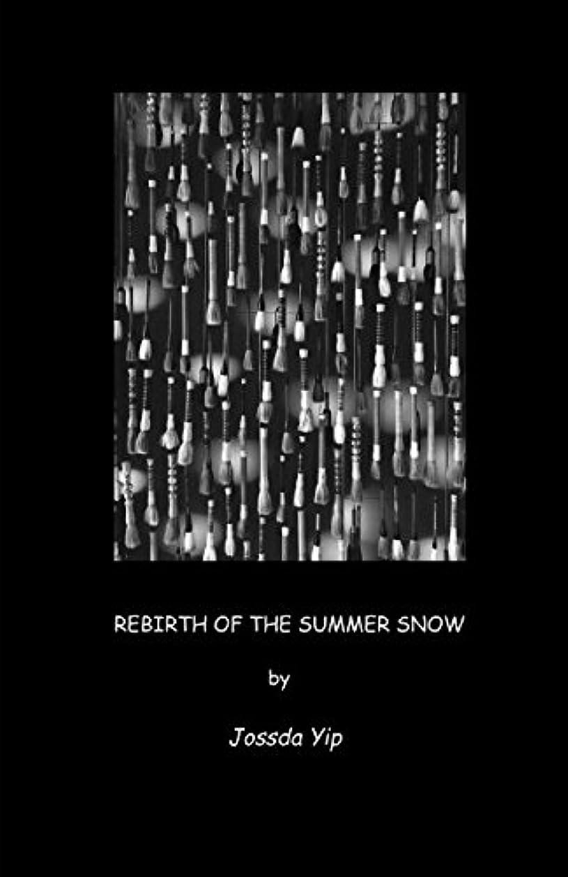 数磁器ドメインREBIRTH OF THE SUMMER SNOW