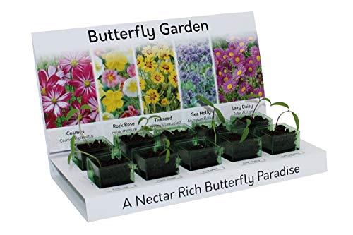 Pflanzset mit Schmetterlingen, 100% recycelbar, 5 Sorten aus Samen, umweltfreundlich, Geschenk, hergestellt aus 100% recycelbaren Materialien