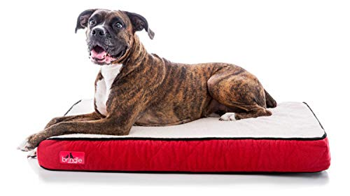Dog Pillow Bed for Older Dogs Who Wet