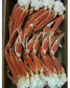 訳あり ボイルズワイ蟹 ( 3L ) 5kg ( 1肩250-300g ) 冷凍 厳選商品 ずわい カニ