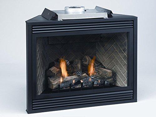"Empire Comfort Systems Premium 36"" Direct-Vent LP Millivolt Control Fireplace"