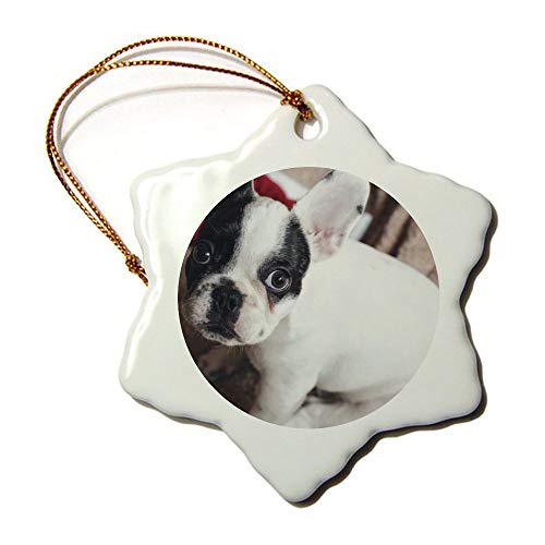 Christmas Ornaments, Christmas Frenchie Porcelain Snowflake Ornament Tree Hanging Decor Gift for Families Friends,3 Inch