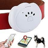 Jason Zeng GPS Dog Satellite Tracker & Activity Monitor Intelligent 5-Level Positioning System, No Subscription Fee IP67 Depth Waterproof Dog & Cat Searcher Locator Trajectory Tracking Alarm (White)