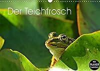 Der Teichfrosch (Wandkalender 2022 DIN A3 quer): 13 Teichfroesche, abgelichtet in ihrem natuerlichen Lebensraum. (Geburtstagskalender, 14 Seiten )