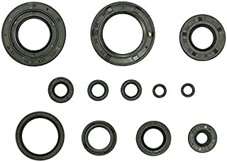 Outlaw Racing Or3529 Engine Oil Seal Kit