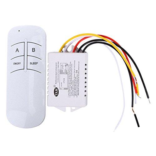 Mingtongli 220V Multifuncional Remoto inalámbrico Interruptor de Control de luz de la lámpara a Distancia Interruptor de Control Digital
