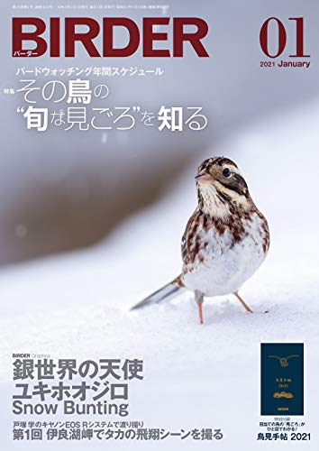BIRDER (バーダー) 2021年 01月号 [雑誌]