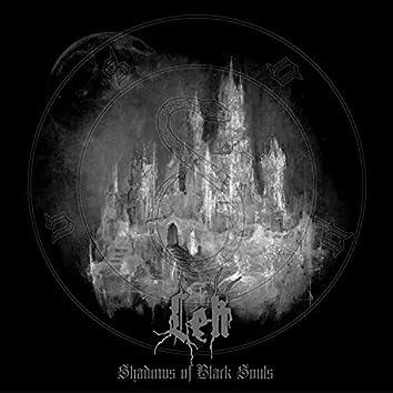 Shadows of Black Souls