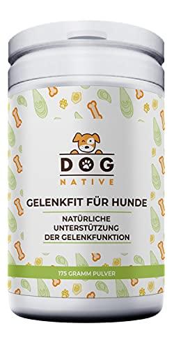 Dog-Native GelenkFit Pulver für Hunde, natürliches Gelenkpulver mit Grünlippmuschel, Kollagen-Hydrolysat, Chondroitin und MSM für Gelenke, 175 g
