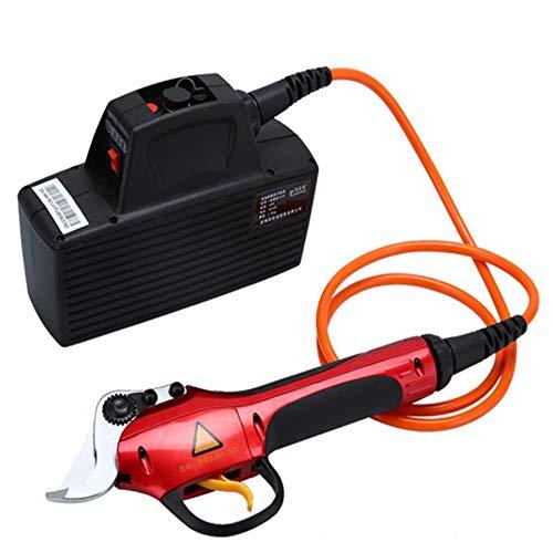 GGKLY Elektrische snoeischaar, 40 mm, professionele lithium-accu: 36 V4Ah, schaardiameter: 30 mm, met 165 cm verlengstang