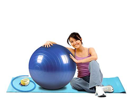 pelota para equilibrio fabricante hanylish