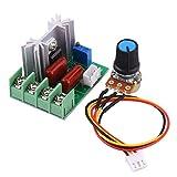 FTVOGUE Régulateur de tension électrique AC 50-220 V 2000 W SCR Régulateur de température et de vitesse du moteur