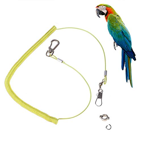 Balacoo Bird Parrot Leash Outdoor Flying Trainning Rope Leash Anti-Bite Elastic String for Parrot Macaw Cockatoo Cockatiel Conure (Random Color)