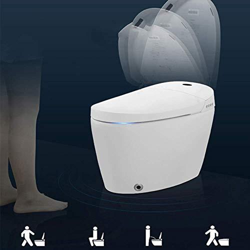 ZJZ Einteilige Toiletten-Bidet-Keramik Automatische Spülung SPA Selbstreinigende Düse Radar-Induktionsautomatik