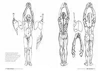 Anatomia artistica. Carnet di morfologia #7