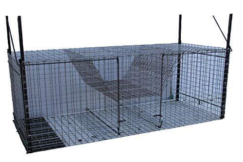 TRAPGALLIER piège Cage Renards 2...