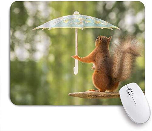 Benutzerdefiniertes Büro Mauspad,Nettes Eichhörnchen-lustiges Tier, das Sonnenschirm an der hölzernen Humor-Natur hält,Anti-slip Rubber Base Gaming Mouse Pad Mat
