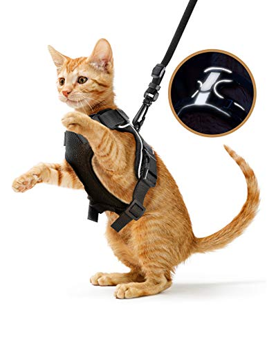 nomoypet Cat Harness and Leash for Walking, Adjustable Escape Proof Vest Harness with Reflective Strips, Soft and Comfortable Jacket Fit for Average Adult Cat, Puppy, Rabbit… (S (Chest: 18