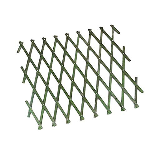 Lettuce Eat  6ft x 2ft (approx) Green Wooden Expanding Trellis Brass Pinned