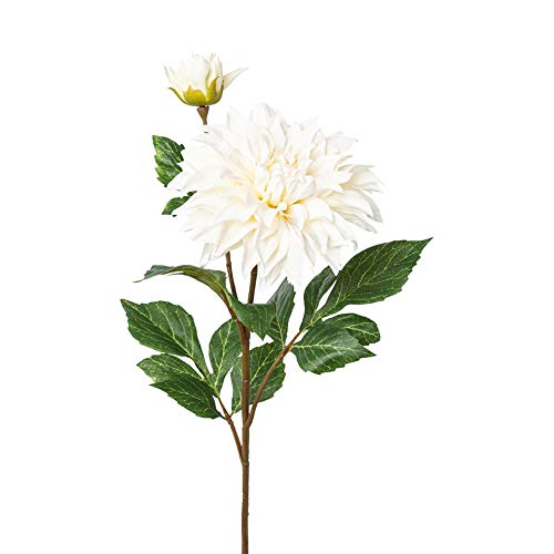 wohnfuehlidee Kunstblume Dahlie, 3er Set, Farbe Creme, Höhe ca. 78 cm