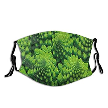 Broccoli Kale Mother Earth Herbs Themed Fractal Background Foliage Modern Design,Face Mask Reusable Washable Masks Cloth for Men and Women