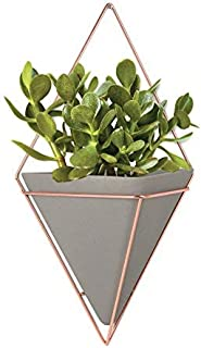 Umbra Altman Plants Succulents Flowering Collection 3.5 inch - 9 Pack Trigg Hanging Planter - Large Copper