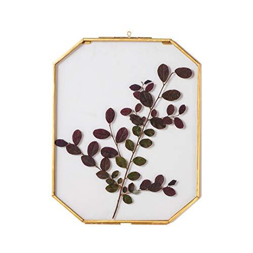 NCYP Wandbehang 20,3 x 25,4 cm langer achteckiger Herbarium-Messing-Glasrahmen für gepresste Blumen, getrocknete Blumen, Poster, Doppelglas, schwebender Rahmen, nur Glasrahmen