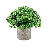 Planta de simulación en Maceta Maceta de Pulpa simulación Planta Verde Bonsai Escritorio en casa Mini Olla-H3