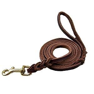Creatwls Cuir de qualité Laisse de dressage de chien. Fabriqué à partir de cuir de haute qualité et est une excellente Option pour chiens de chasse ou General Obéissance dans la cour.