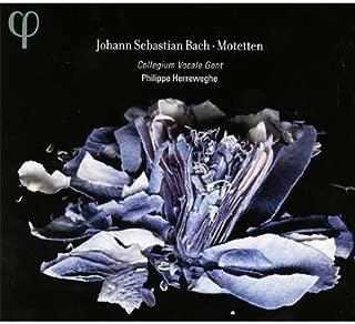 Motets BWV 225-230 by Philippe Herreweghe, Collegium Vocale (2011) Audio CD