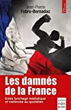 Les damnés de la France: Le lynchage des mal-pensants