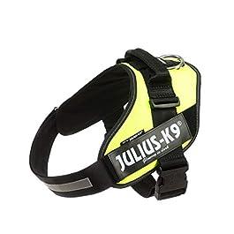 Julius-K9, 16IDC-FNE-2, IDC Powerharness, dog harness, Size: XL/2, UV Neon Green