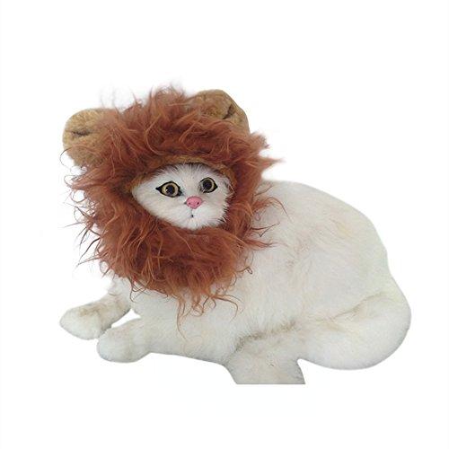 Unbekannt Pro Tier Funny Kostüm Löwe Mähne Perücke Hat für kleine Hunde/Katzen/Kätzchen