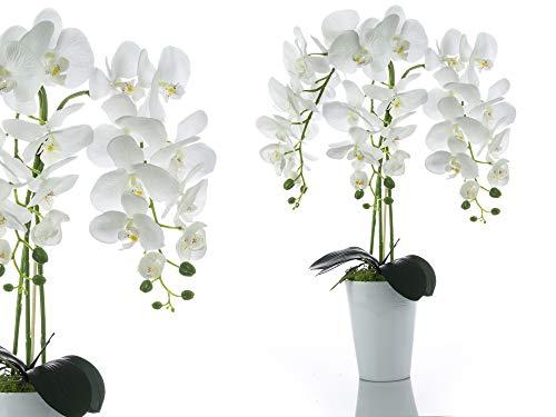 First Künstliche Orchidee Gesteck im Keramik Übertopf | Gesamthöhe: ca. 65cm // Gesamtbreite: ca. 43cm | Stoffblüten | Gesteck Orchideen Kunstpflanze Arrangement Kunstblumen Tischdeko Fensterschmuck